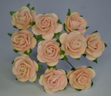 1.5cm PALE PINK Mulberry Paper Roses